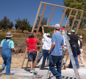 VTG---Chile-2008-raising-wall-crop